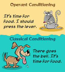 classical vs operant conditioning psychology and neuroscience