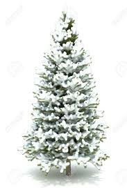 christmas tree with snow christmas tree covered with snow isolated on a white background