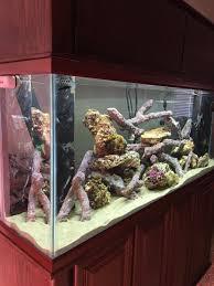 Floating Aquascape Reef2reef Saltwater And Reef Aquarium Forum - my new tank reef2reef saltwater and reef aquarium forum