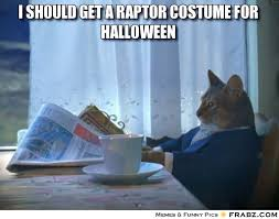 Halloween Cat Meme - halloween cat memes festival collections