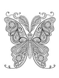 coloring pages 23 free printable insect animal page 19
