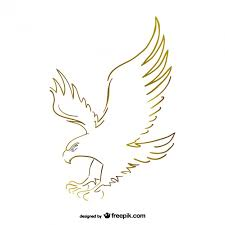 flying eagle sketch vector vector free download