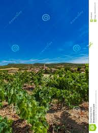 town cruzy in languedoc roussillon province in france stock photo