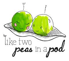 two peas in a pod picture frame like two peas in a pod cruickshanks
