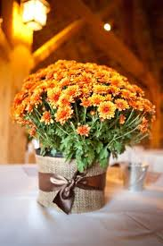 Ready Made Wedding Centerpieces by Best 25 Fall Table Centerpieces Ideas On Pinterest Fall Table