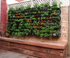 garden wall small space gardening u2013 20 clever ideas to grow in a limited space
