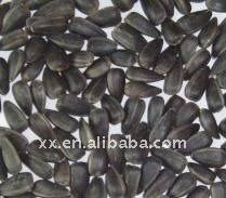 black oil sunflower seed prices black oil sunflower seed prices