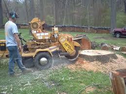 stump grinder rental near me stump ohio fishing your ohio fishing resource