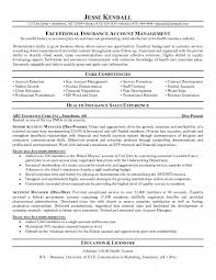 Insurance Agent Job Description For Resume Account Manager Resume