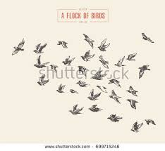 engraving stock images royalty free images u0026 vectors shutterstock