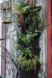 living walls at seattle u0027s northwest flower and garden show 2011
