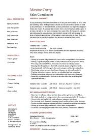 Resume Templates Samples Examples by Sales Coordinator Resume Sample Example Job Description