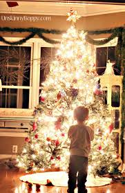 photograph christmas tree daylight unskinny boppy