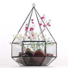 Amazon Succulents Amazon Com Hanging Six Surface Diamond Glass Geometric Terrarium