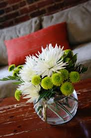green button mums and white spider mums flowering pinterest