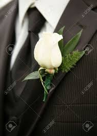 Wedding Boutonniere White Rose Wedding Boutonniere On Suit Of Best Man Stock Photo