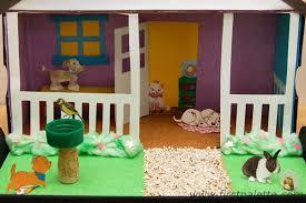 pet diorama craft crafts firstpalette