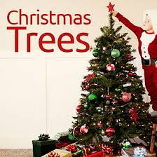 Christmas Decoration Storage Containers Australia by Christmas Decorations Christmas Trees And Christmas Lights The