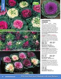 Color Up Park Wholesale Seed U0026 Growers Supply By Jppa Inc Issuu