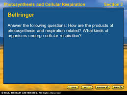 photosynthesis and cellular respirationsection 3 section 3