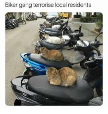 Biker Meme - biker gang terrorise local residents meme xyz