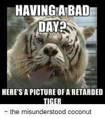 Tiger Meme - 25 best memes about retarded tiger retarded tiger memes