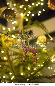 real tree decorated stock photos real tree