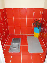 Bathrooms In India 10 Toilet Designs That Can Actually Work In Rural India