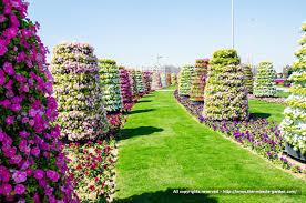 gorgeous beautiful flower garden most beautiful flower gardens in