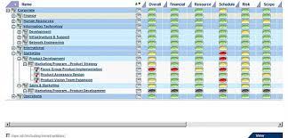 portfolio management reporting templates pcubed insight insight 2 arra guidance