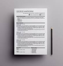 Best Technical Writer Resume by Best 25 Professional Resume Writers Ideas On Pinterest Resume