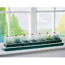 windowsill planters herbs in stock now greenfingers com