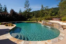 Lagoon Style Pool Designs by Ideas Valencia Pool Designs