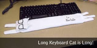 Keyboard Cat Meme - keyboard cat wrist rest is meme tastic pcworld