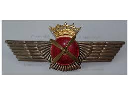 spain pilot wings badge air insignia