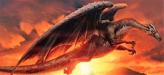 dragon harry potter wiki fandom powered wikia