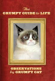 the grumpy guide to life by grumpy cat scholastic