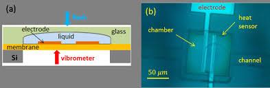 th e chambre b figure 1 a schematic representation of the chamber b top view