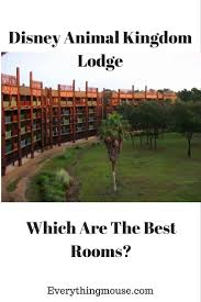 best 25 disney animal kingdom lodge ideas on pinterest disney