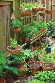 container gardening made easy you can grow anything from