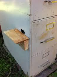 Diy File Cabinet Diy Filing Cabinet Honey Bee Hive Adoboloco