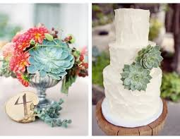 used wedding centerpieces sedum wedding centerpieces ideas favors left right imagine