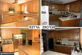 New Kitchen Cabinets Vs Refacing How Much Did Your Cabinet Refacing Cost Inspirative Cabinet