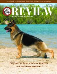 lexus bree van de kamp gsd review july 2017 website by the german shepherd dog review issuu