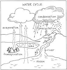 52 best science the water cycle images on pinterest science