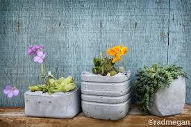 molded concrete planters radmegan