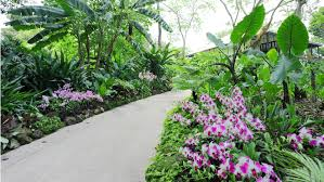 Botanical Gardens In Singapore by 10 Amazing Things You Never Knew About Singapore Visitsingapore Au