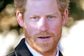 Prince Harry by Prince Harry U0027s Resplendent Ginger Beard Is Back Vanity Fair