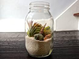 beach in a jar