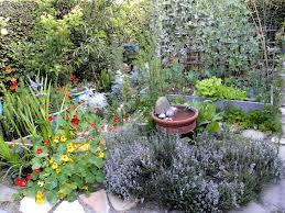 Indoor Kitchen Garden Ideas Home Decor Wonderful Herb Garden Ideas Build Indoor Herb